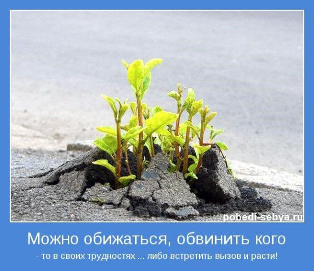 motivator-36